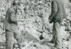 kamieniołom 44